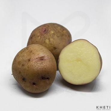 Potato Red (Indian) (Rato aalu Indian)