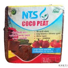Cocopeat_NTS