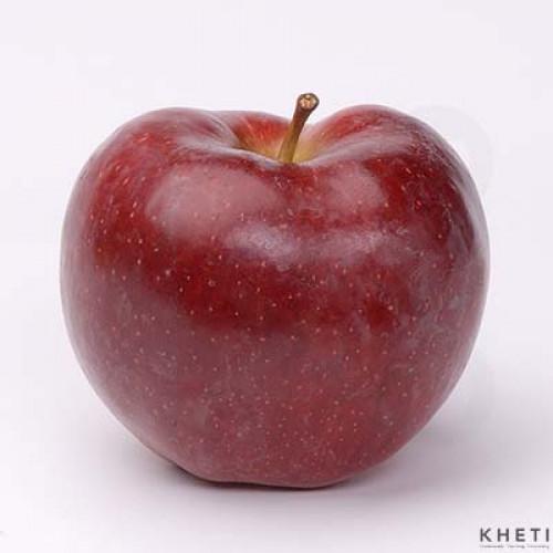 Apple (Thai fuji)