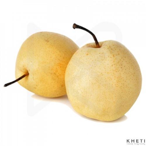 Chinese Pear/ Naspati