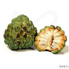 Custard apple (Sarifa)