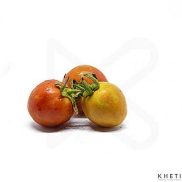 Tomato (SanoTamater)