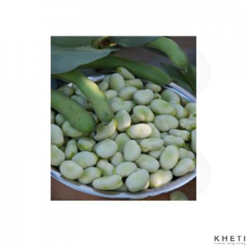 Bakula (Broad Beans)