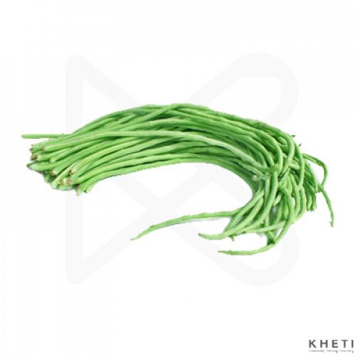 Tane Bodi - Yard Long Bean