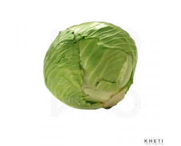 Cabbage (Banda)