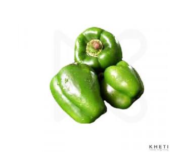 Capsicum (bhede khursani, Shimla mirch)