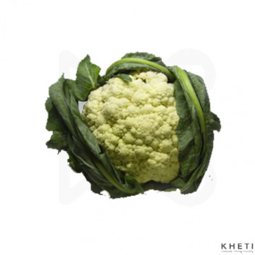 Cauliflower (Fulgobi)
