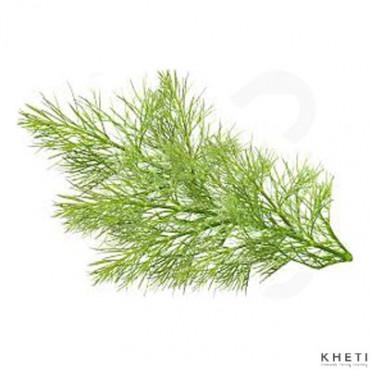 Fennel leaf (Sauf ko saag)