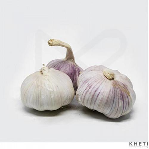 Garlic Dry (Chinese)
