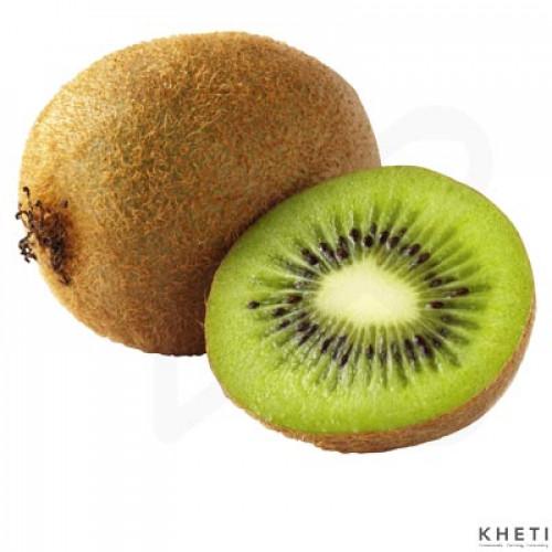 Kiwi (Imported)