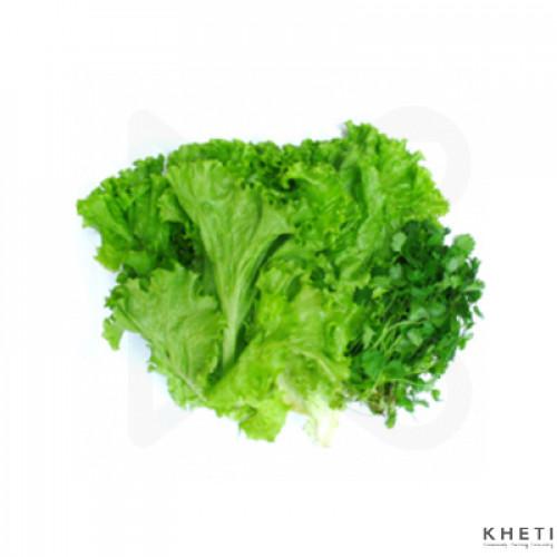 Lettuce (jiri ko saag)