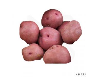Potato Red (Rato aalu)