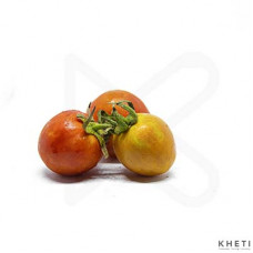 Tomato Small (sano tamatar)